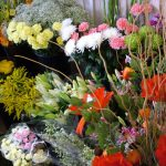 a selection of flowers in the shop