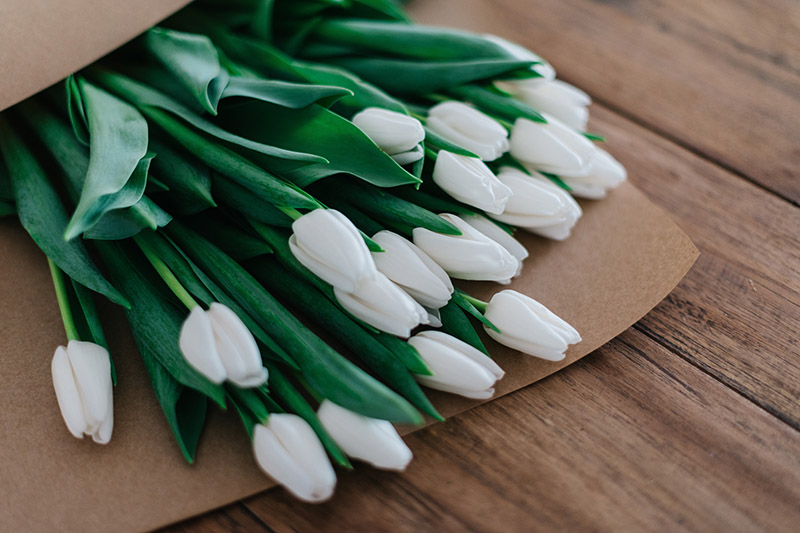 white tulips in an envelope